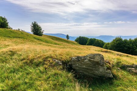 beautiful mountain landscape in afternoon. forest on the grassy meadows. clouds on the sky. wonderful evening weather in summertime. amazing carpathian landscape of svydovets massif