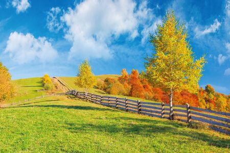 rural area in mountains. beautiful autumn weather on a sunny day. wooden fence along the country road uphill. trees in fall foliage. blue sky with clouds Stock Photo