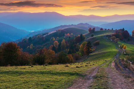 mountain countryside at dusk. beautiful autumn scenery. trees along the path through hilly rural area. carpathian borzhava ridge beneath a glowing golden sky with clouds in the distance Stock Photo
