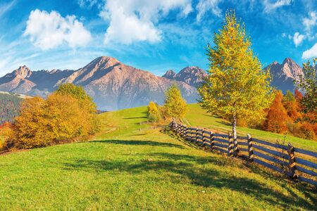 composite rural area in high tatra mountains. beautiful autumn weather on a sunny day. wooden fence along the country road uphill. trees in fall foliage. blue sky with clouds Stock Photo
