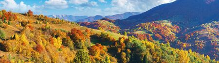 wonderful autumn panorama in mountains. trees in fall colorful foliage on the hill. clouds on the blue sky above the distant ridge. wonderful october afternoon weather. amazing carpathians Stock Photo