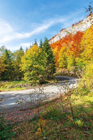 serpentine road in apuseni mountains, pietrele negre romania. rocky cliff above the passage. trees in colorful foliage. beautiful and sunny autumn weather.