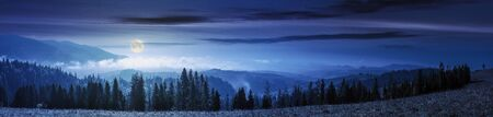 mountain panorama with forest on meadow at night. beautiful autumn weather. clouds and fog rising above the hills with row of spruce trees in full moon light.