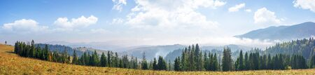 mountain panorama with forest on meadow. beautiful autumn weather. clouds and fog rising above the hills with row of spruce trees