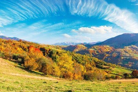 mountain countryside on a sunny autumn evening. beautiful rural landscape in afternoon light. trees on the grassy hills. sky with beautiful clouds above the distant ridge Stock Photo