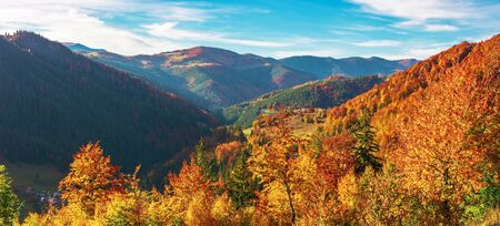 great panoramic view of romania mountain landscape. forested slopes in evening light. deciduous trees in fall foliage. warm autumn afternoon scenery. village down in the distant valley