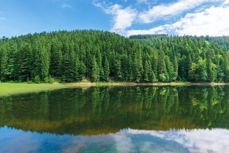 beautiful summer landscape in mountains. lake among the spruce forest. wonderful sunny weather with some clouds on the sky. scenery reflecting in the water. great symmetric view of green and blue nature Stock Photo