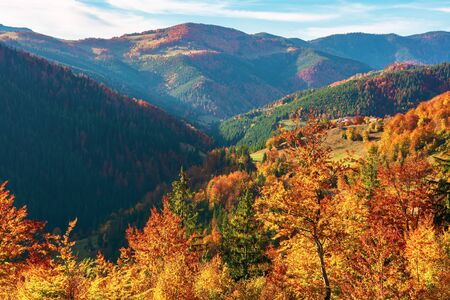 great view of romania mountain landscape. forested slopes in evening light. deciduous trees in fall foliage. warm autumn afternoon scenery. village down in the distant valley Stock Photo