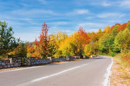 country road in mountains on a sunny day. wonderful autumn weather. trees in colorful foliage. blue sky with high clouds.