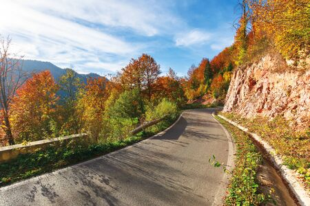 narrow serpentine road in mountains on a sunny day. wonderful autumn weather in afternoon. trees in colorful foliage. blue sky with high clouds.