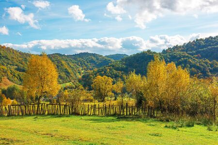 wonderful rural landscape in mountains. sunny autumn weather with clouds on the sky. trees in yellow foliage on the grassy pasture behind the wooden fence.  beautiful carpathian countryside Stock Photo