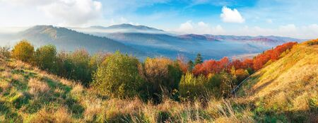 great panoramic of morning landscape in mountains. light passes through rising fog in the distant valley. wonderful autumn weather. trees on the near slope in colorful foliage. clouds above the ridge