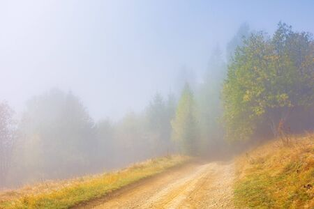 dirt road through the meadow at foggy sunrise. beautiful autumn scenery with forest in the morning. wonderful nature background in misty weather.