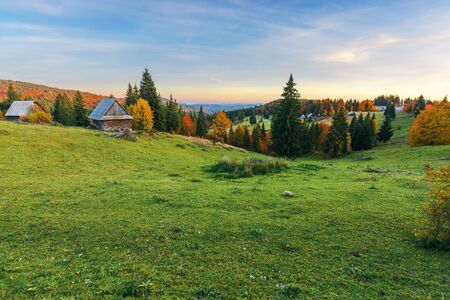 great view of rural landscape in mountains at dusk. mixed forest on the grassy slopes. wood shed near spruce trees. old authentic village in the distance. location Ghetari, Alba country, Romania Stock Photo