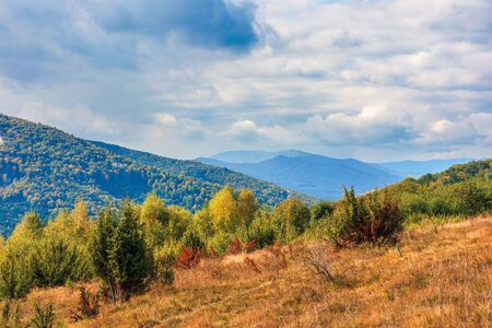 beautiful mountain landscape in autumn. colorful scenery on a sunny day. changing weather with clouds on the sky. weathered grass on the meadow. distant ridge in haze. travel back country concept
