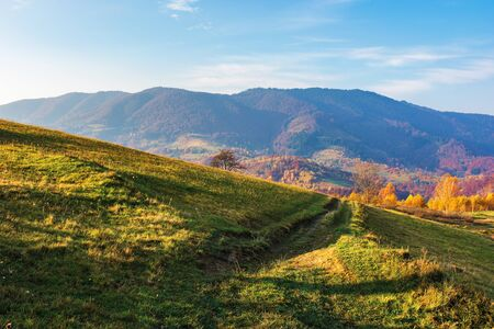 rural area in mountain at sunrise. wonderful golden autumn weather with high clouds on the blue sky. path through grassy meadow in to the distant valley. nature in vivid fall colors Stock Photo