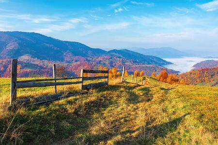 rural area in mountain at sunrise. wonderful golden autumn weather with high clouds on the blue sky. wooden fence along the path through grassy meadow in to the distant valley full of morning fog. nature in vivid fall colors