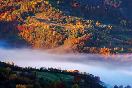 beautiful autumn landscape with valley fog. wonderful nature scenery at sunrise. trees in colorful foliage Foto de archivo - 130705878