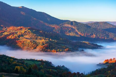 beautiful autumn landscape with valley fog. wonderful nature scenery at sunrise. mountain ridge in the distance. Stock Photo