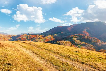 beautiful mountain landscape in autumn. wonderful sunny afternoon weather with fluffy clouds on the sky. forested hills rolling in to the distant mountain ridge. path along the grassy meadow Stock Photo