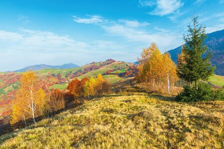 calm autumn morning in the mountains. beautiful countryside with fields and orchards on hills. traditional carpatian landscape. trees in colorful foliage, some clouds on a bright blue sky