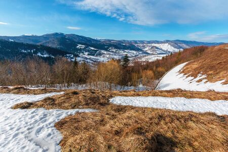spring has come. last days of winter landscape. forest on mountain hills and peaks covered with snow. weathered yellow grass on meadows under blue sky