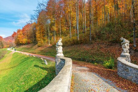 beautiful fall scenery in the park. walkway along the grassy meadow on the slope and forest in colorful foliage. wonderful sunny weather with blue sky. great day for a relaxing walk
