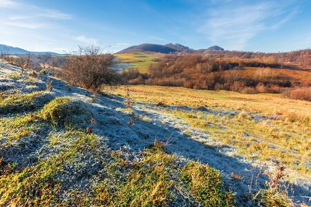 frosty morning in mountainous countryside. wonderful sunny weather. late autumn scenery with leafless trees on the hills. grassy meadow in hoarfrost Stock Photo