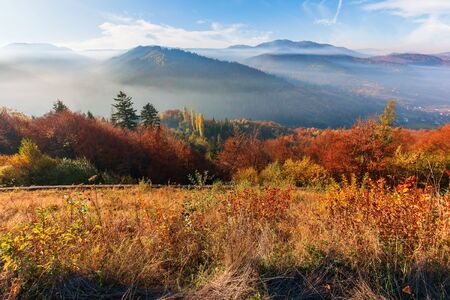 foggy morning in carpathian mountains. amazing nature landscape in fall season. forest in red and orange foliage. meadow in weathered grass. distant ridge in misty atmosphere under the blue sky