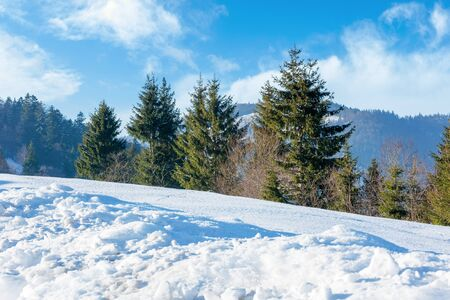 sunny winter day in mountains. spruce trees on the hill. blue sky with clouds Stock Photo