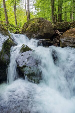mighty cascade on the water stream in forest. huge boulders among trees in green foliage. wonderful nature background in springtime Stock Photo