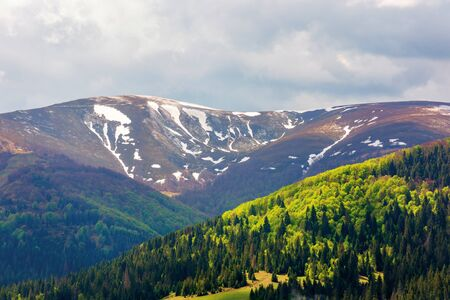 mountain hymba view in springtime. part of borzhava ridge of ukrainian carpathians located in transcarpathia. summit with spots of snow. forest in green foliage. sunny weather with clouds on the sky Stock Photo