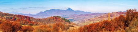forest with red foliage on hills in autumnal countryside. panoramic view of mountainous area with gorgeous high peak pikui of watershed mountain ridge in a distance. trancarpathia, ukraine Stock Photo