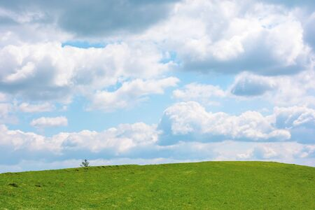 grassy meadow beneath a cloudy sky. wonderful sunny weather in springtime. beautiful countryside scenery with pasture on the hill