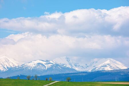 snow capped western high tatras ridge in springtime. beautiful sunny weather with clouds on a blue sky. green grassy hill on the foreground of a landscape. idyllic scenery of slovakia Stock Photo