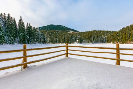 fence on the wooden pier on the lake. wonderful sunny weather in winter. frozen lake synevyr covered with snow. spruce forest on a shore around. beautiful landscape of carpathian mountains