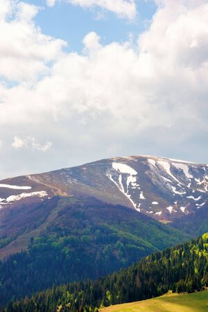 mountain hymba in springtime. part of borzhava ridge of ukrainian carpathians located in transcarpathia. summit with spots of snow. forest in green foliage. sunny weather with clouds on the blue sky Stock Photo