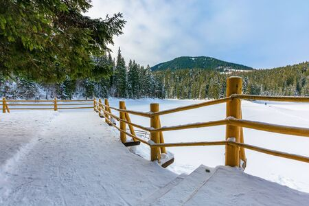 fence on the wooden pier on the lake. wonderful sunny weather in winter. frozen lake synevyr covered with snow. spruce forest on a shore around. idyllic transcarpathia scenery Stock Photo
