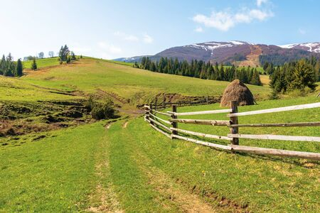 transcarpathian countryside in springtime. haystack behind the wooden fence on the grassy meadow. spruce forest on hills rolling in to the distant mountain. borzhava ridge with snow capped tops