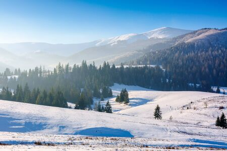 mountainous countryside in wintertime. snow covered rural fields on rolling hills with spruce forest. sunny and frosty afternoon. Stock Photo - 136000339