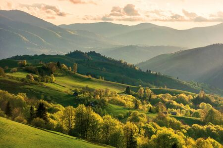 mountainous countryside at sunset. landscape with grassy rural fields and trees on hills rolling in to the distance in evening light. distant ridge and valley in haze. fantastic scenery in springtime