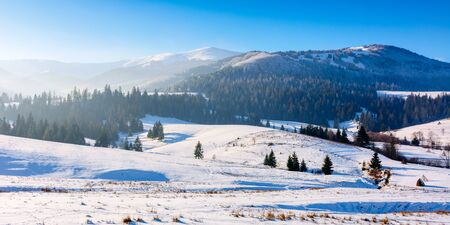 mountainous countryside in wintertime. snow covered rural fields on rolling hills with spruce forest. sunny and frosty afternoon. Stock Photo - 136867622