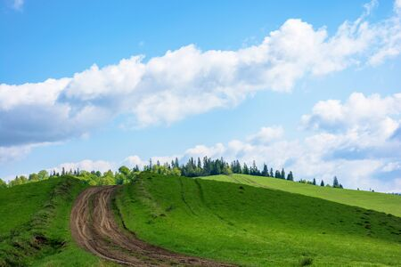 dirt road uphill the green hill. grass covered meadow in dappled light. path leads to coniferous forest in the distance. amazing blue sky with clouds on the horizon. stunning countryside scenery