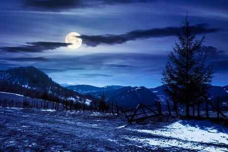 spruce trees on the mountain hill at night. early springtime weather with clouds on the sky in full moon light. snow and grass on the meadow. valley and ridge in the distance Stock Photo