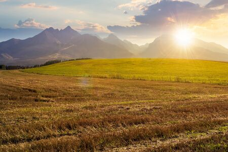 rural landscape of slovakia in summer at sunset. empty wheat field in august. high tatras mountain ridge in the distance in evening light. sunny weather with clouds on the sky Stock Photo