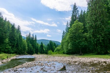 nature scene with mountain river. drying problem, ecology disaster. grassy meadow on the shore, ridge in the distance. cloudy day