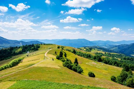 mountain rural landscape in summertime. country path winding off in to the distant ridge. rolling hills with grass fields and meadows. calm sunny weather with fluffy clouds on the blue sky