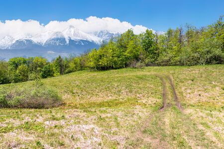 idyllic springtime landscape composite. meadow among the forest. high tatra mountain ridge with snow capped peaks in the  distance. sunny weather with clouds on the sky. beauty of nature concept Stock Photo