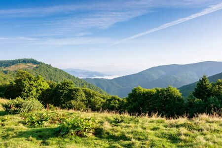 mountain landscape with clouds. beautiful summer scenery. forest on the hills Stock Photo