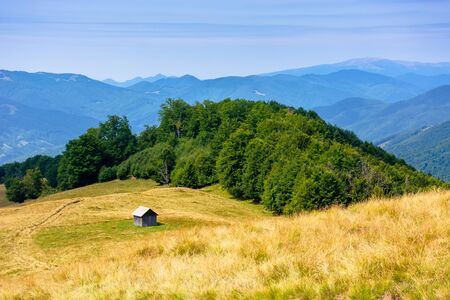 mountainous countryside in summertime. country road down the hill through the grassy meadow. woodshed on the path. sunny weather with cloudless sky. explore back country concept Stock Photo
